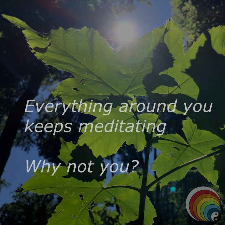 12-IG-Everything_meditating